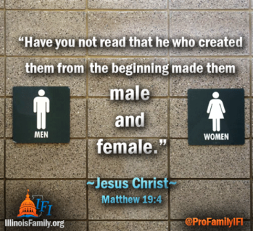 The Illinois Family Institute quotes the words of Jesus Christ from Matthew 19: